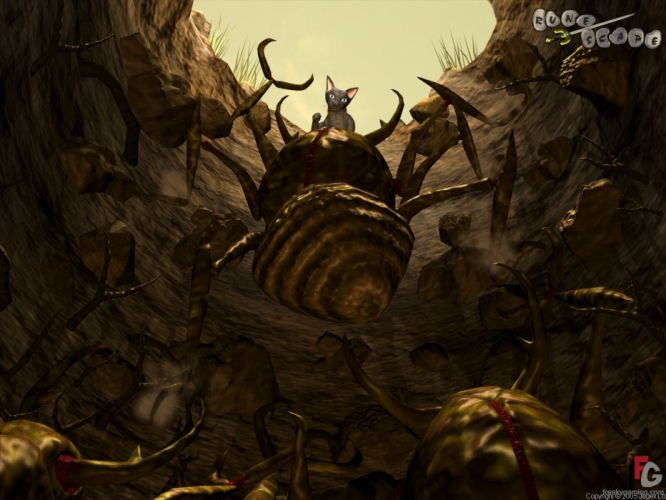 RUNESCAPE fantasy adventure cat spider monster wallpaper