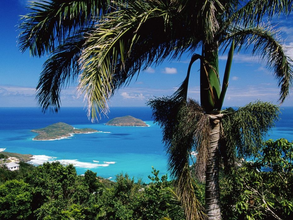 ocean trees tropical islands wallpaper