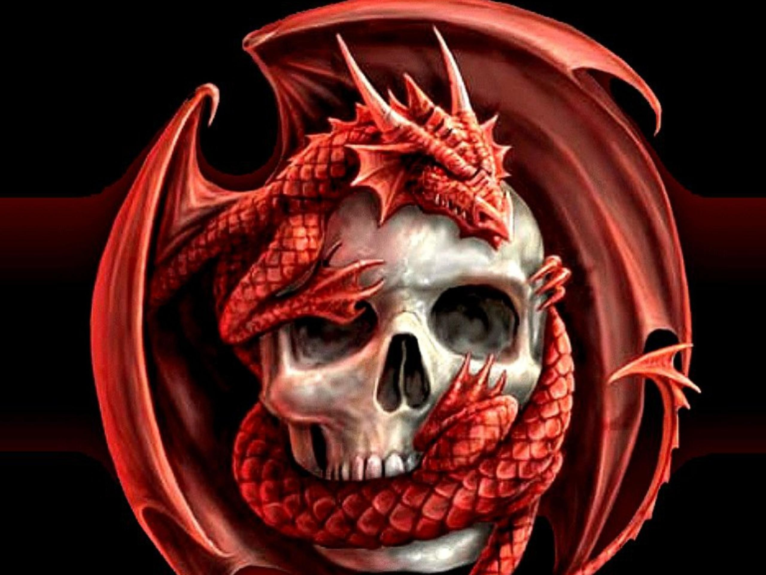 Skulls dragons wallpaper | 2560x1920 | 220804 | WallpaperUP