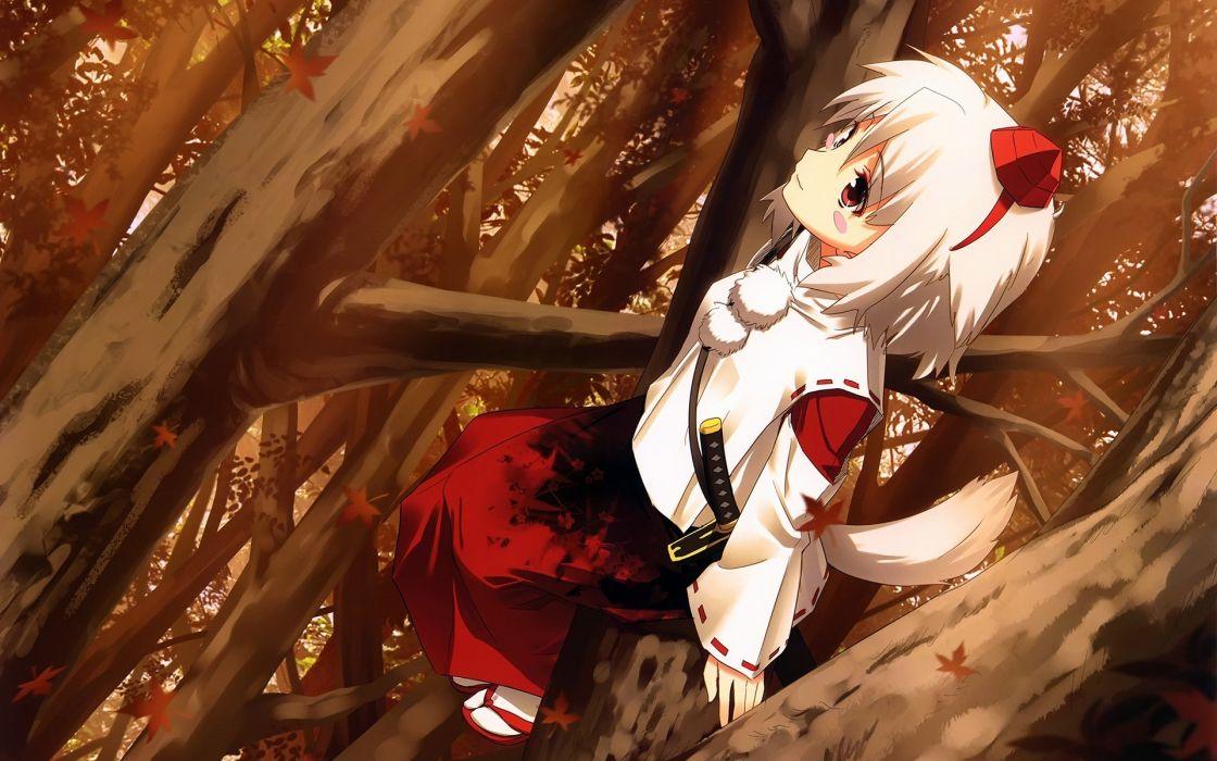 women tails Touhou weapons animal ears white hair Inubashiri Momiji anime girls tengu swords games wallpaper