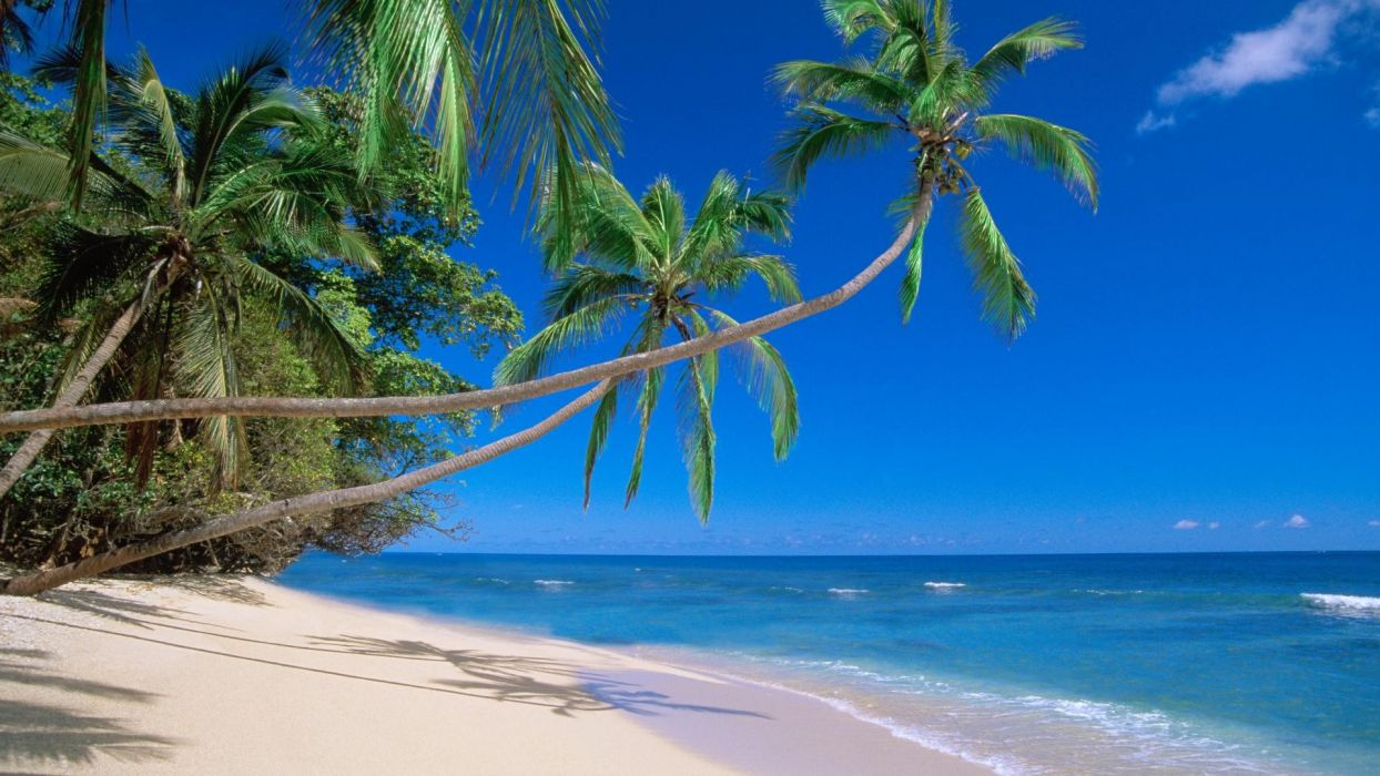 nature Fiji beaches wallpaper