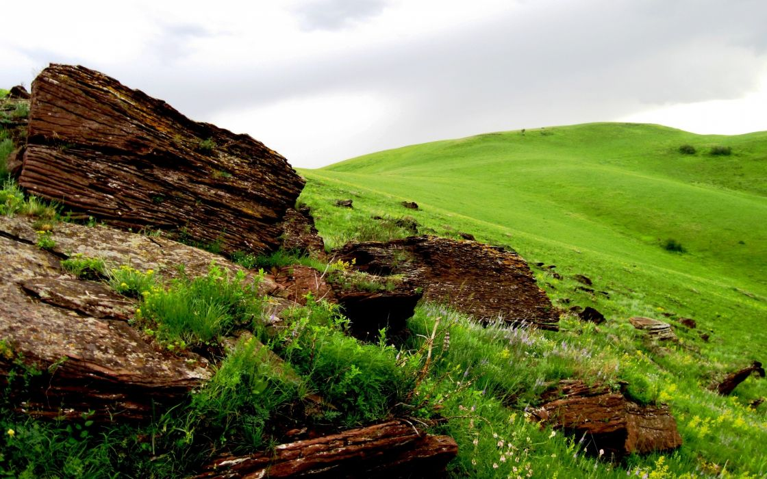 nature grass hills stones wallpaper