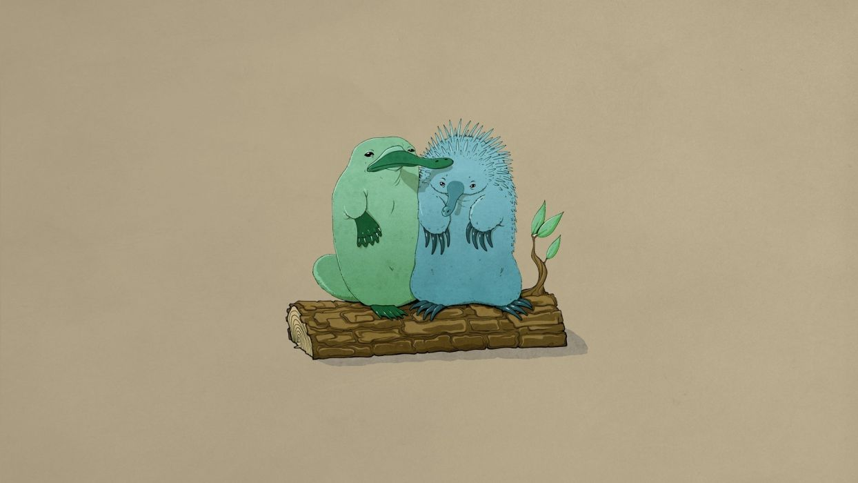 platypus logs friendship echidna wallpaper