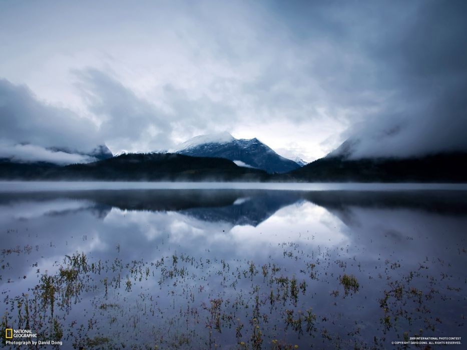 nature National Geographic wallpaper