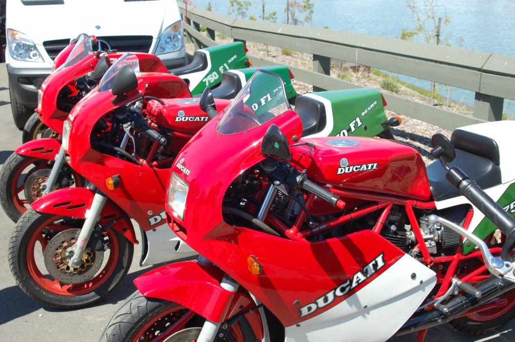 Ducati 750 formula f-1 (4) wallpaper