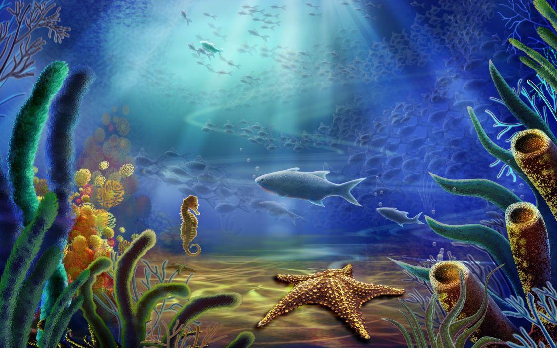 ocean fish starfish underwater sea wallpaper