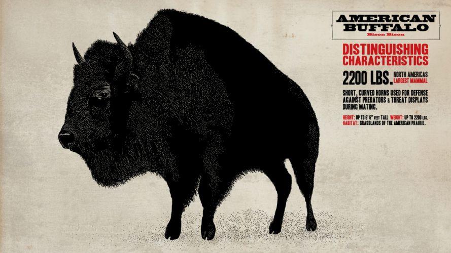 buffalo Red Dead Redemption wallpaper