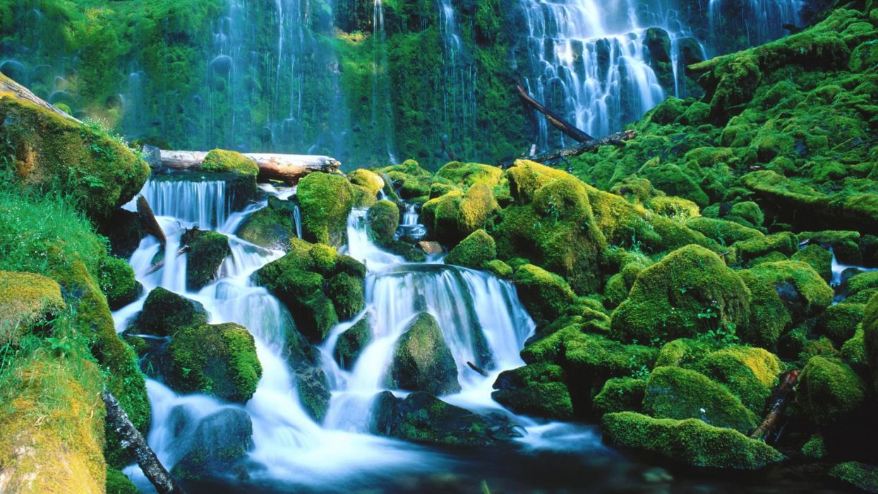 landscapes forests falls national Oregon waterfalls proxy wallpaper