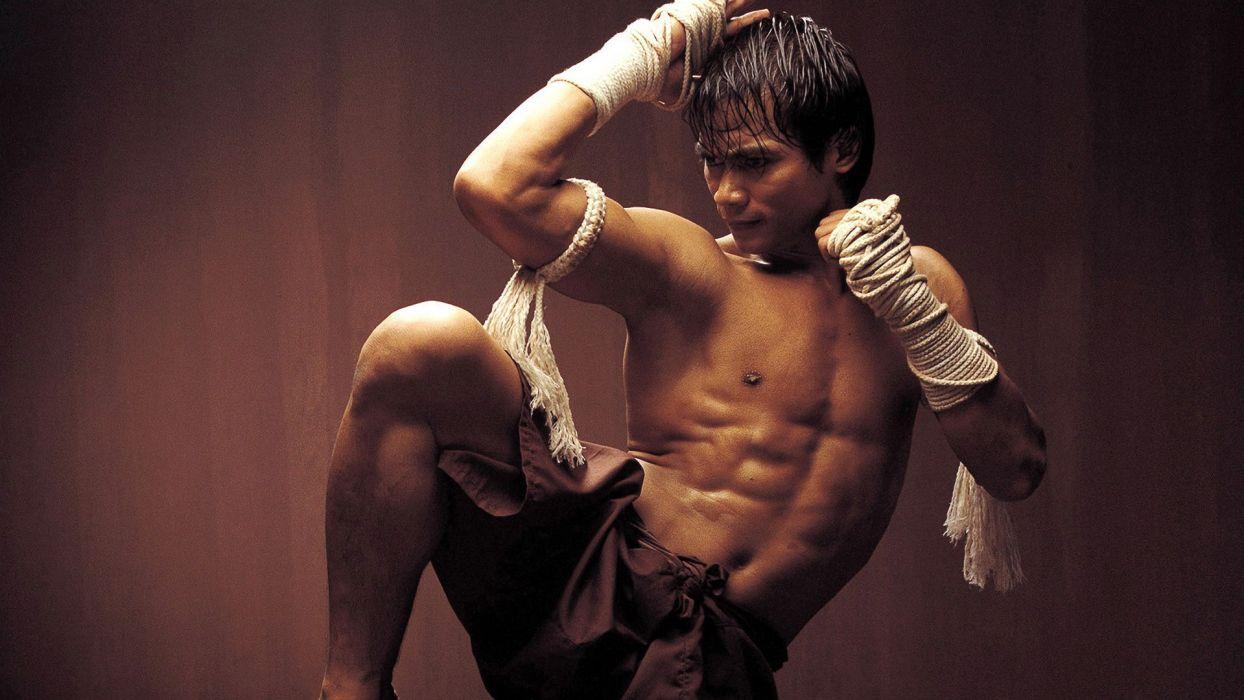 movies Thailand actors Tony Jaa Thai Muay Thai Ong Bak fighters wallpaper