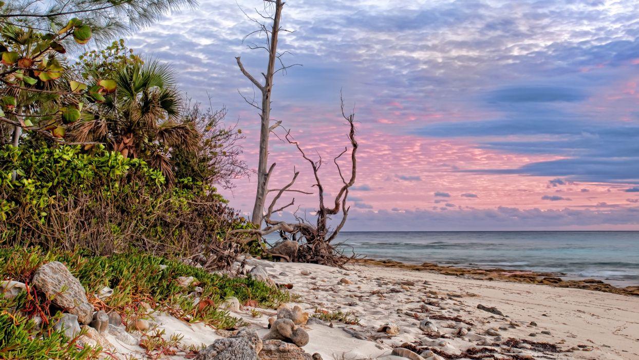 ocean clouds sand skylines beaches wallpaper