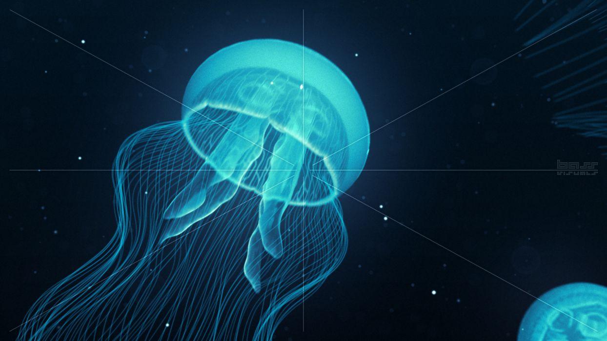 jellyfish underwater ocean sea bokeh jelly (32) wallpaper
