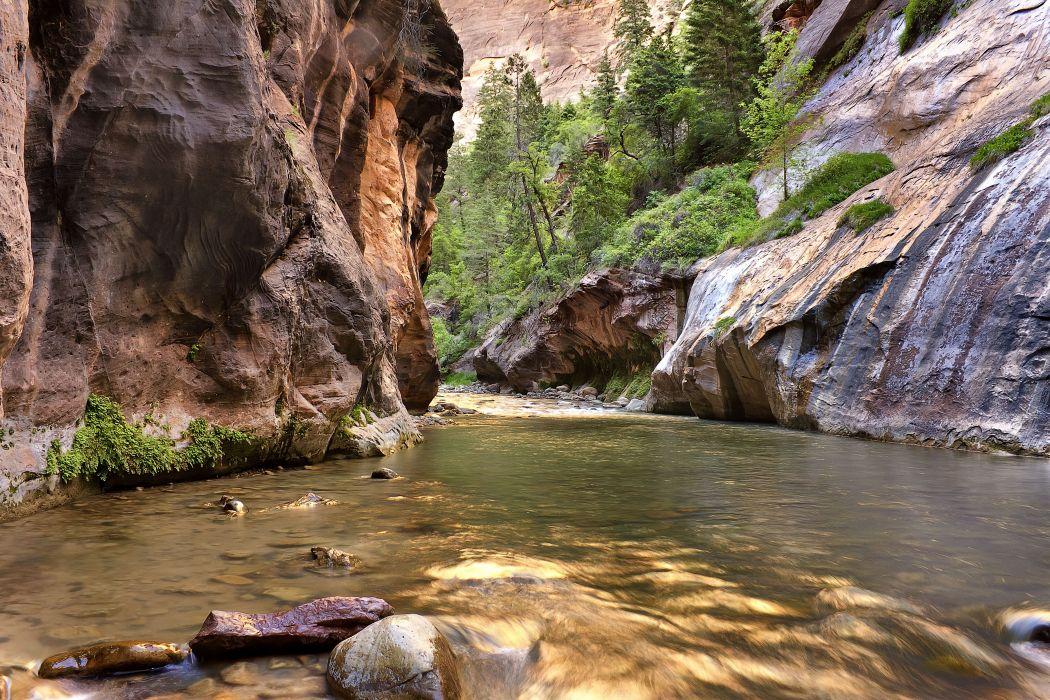 rock river trees landscape wallpaper