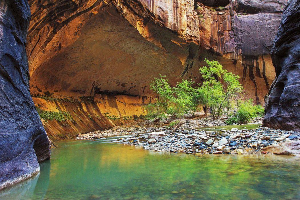 Zion Narrows rock river trees landscape wallpaper