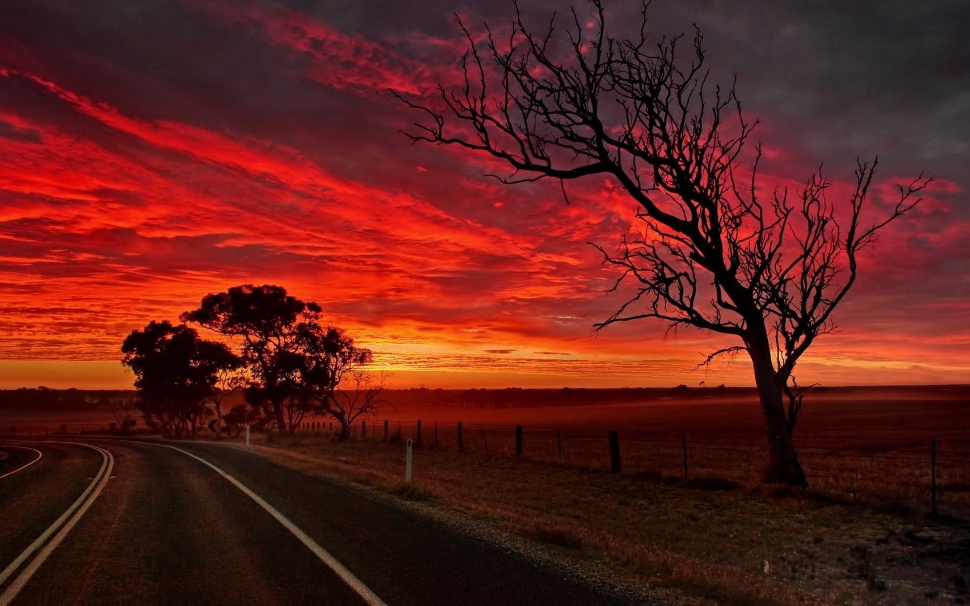 Sunset clouds landscapes Sun trees roads skies orange sky ...