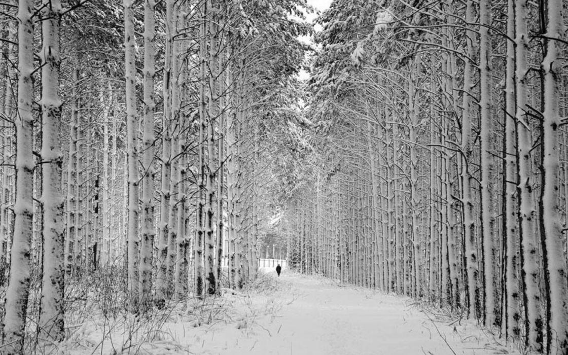 winter roads wallpaper