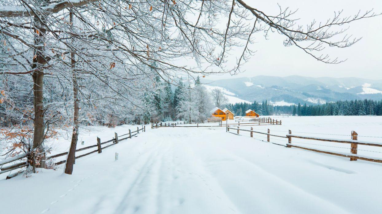 winter snow wallpaper