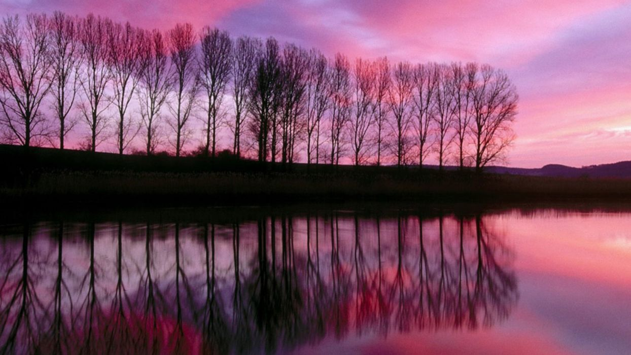 sunset landscapes trees lakes reflections wallpaper