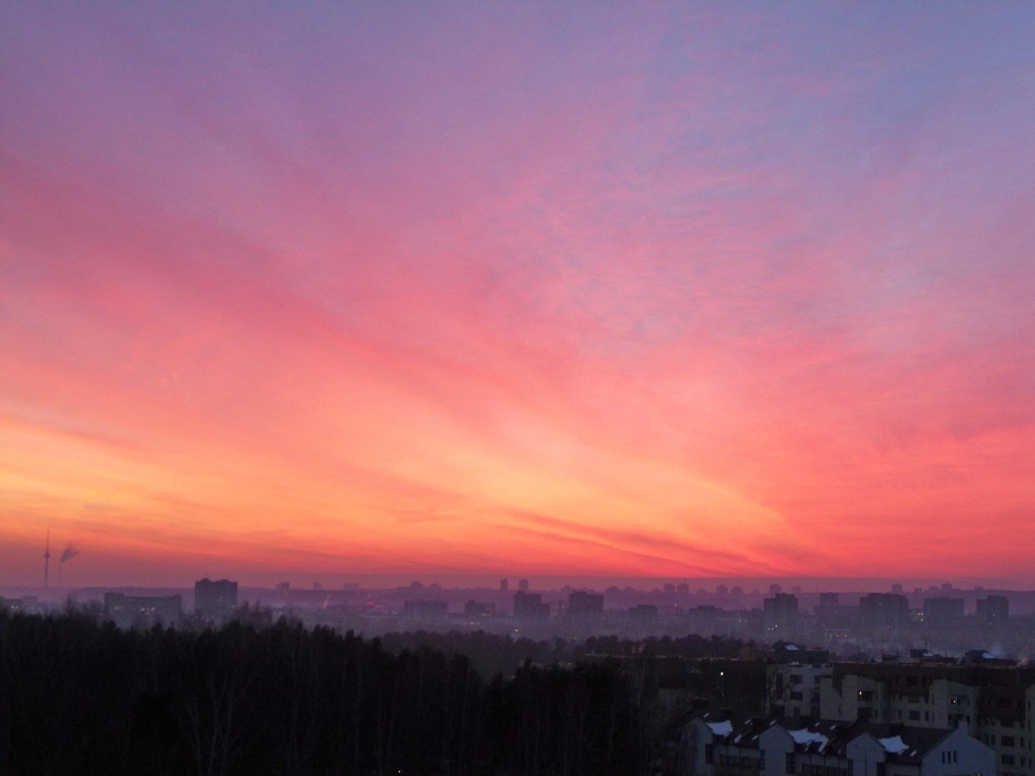 Pink Skies wallpaper