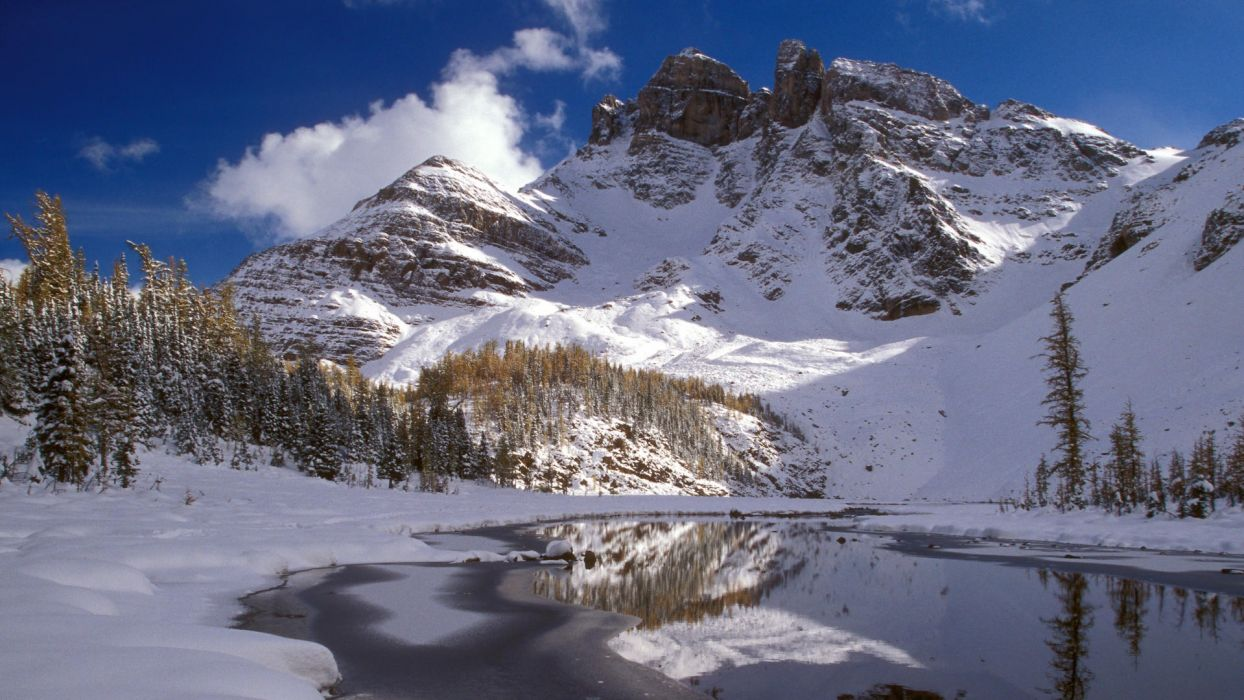 nature winter British Columbia wallpaper