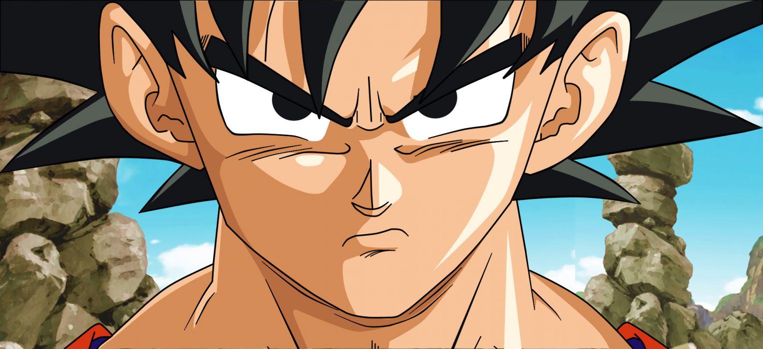 Son Goku Dragon Ball Z wallpaper