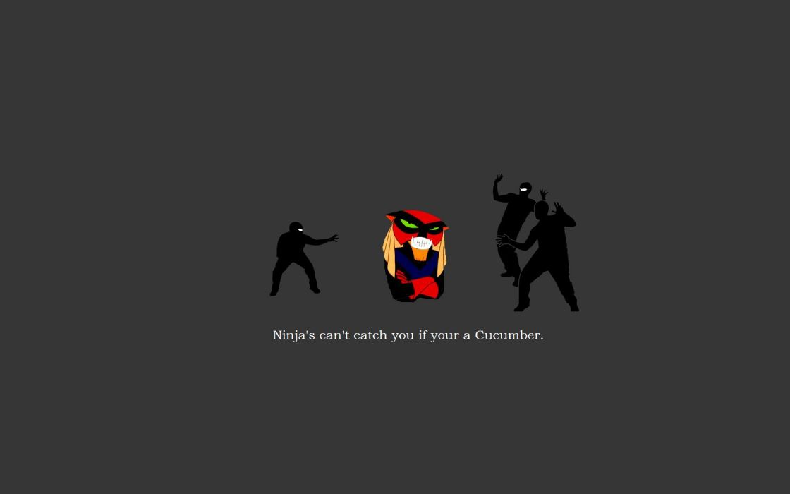 funny ninjas cant catch you if Brak wallpaper