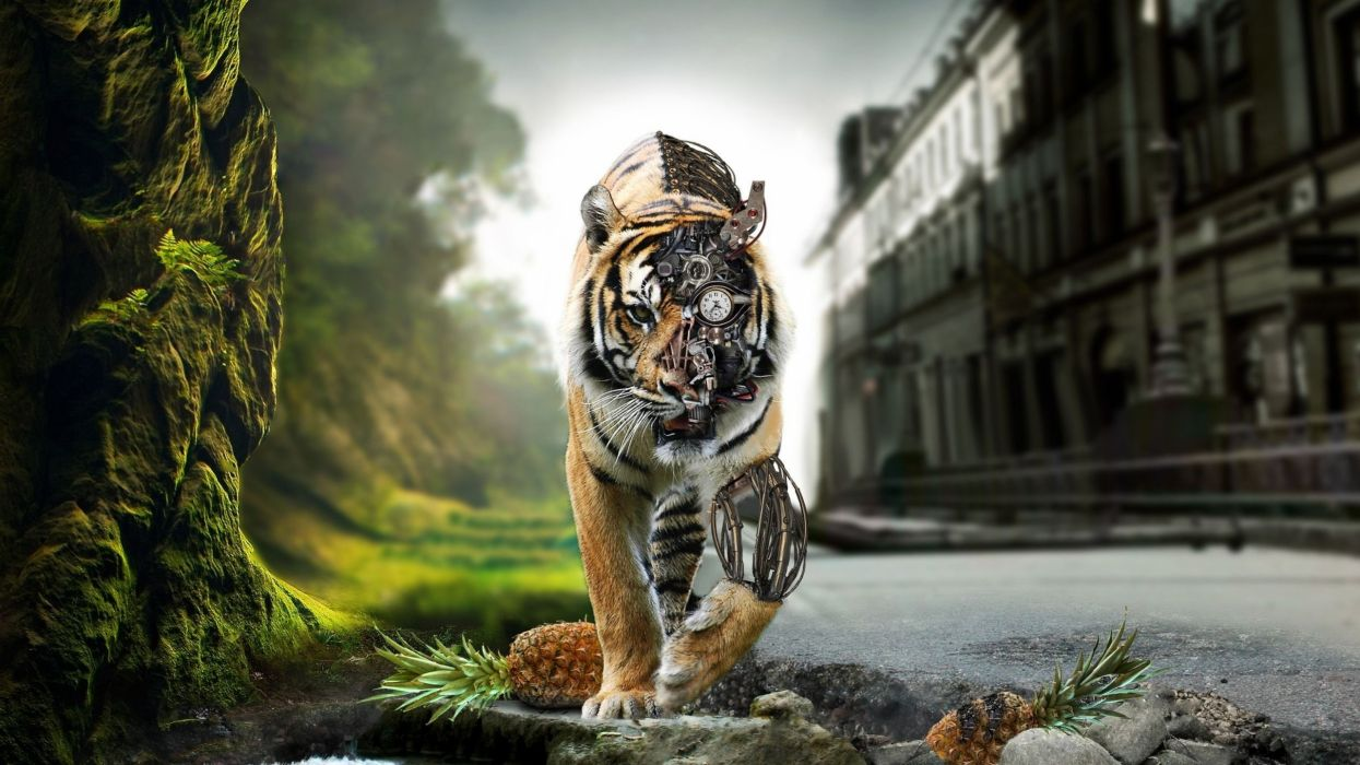 animals tigers cybernetic wallpaper