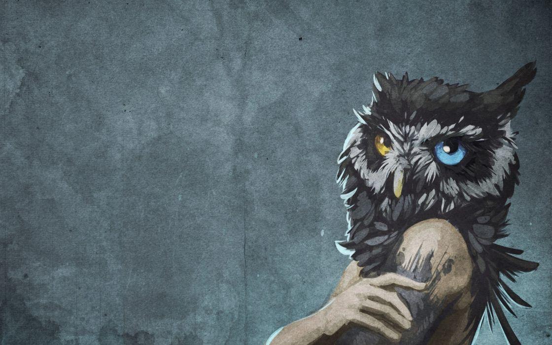 head heterochromia owls scp-1155 scp wallpaper