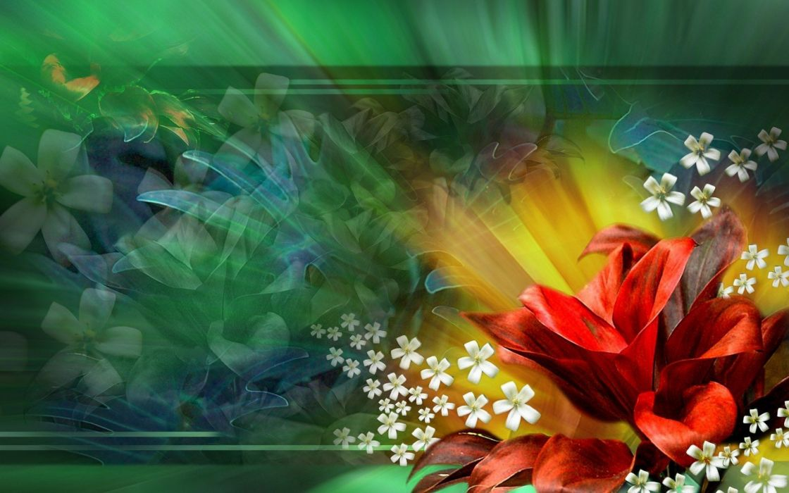 bouquet flowers abstract background wallpaper
