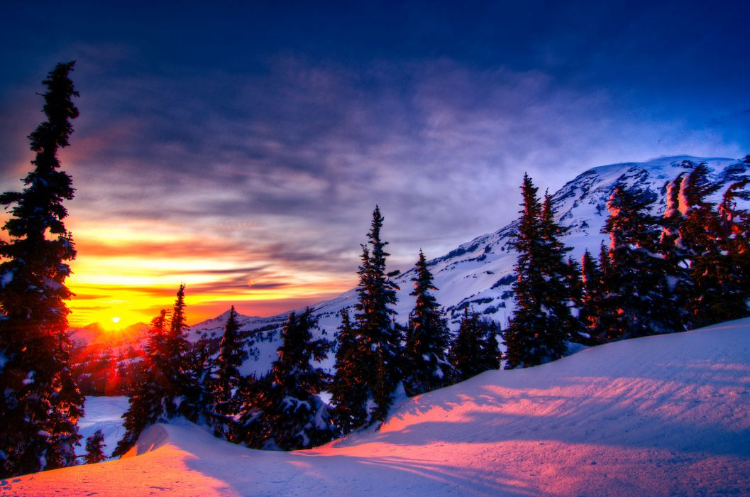 sunset winter trees mountains landscape wallpaper