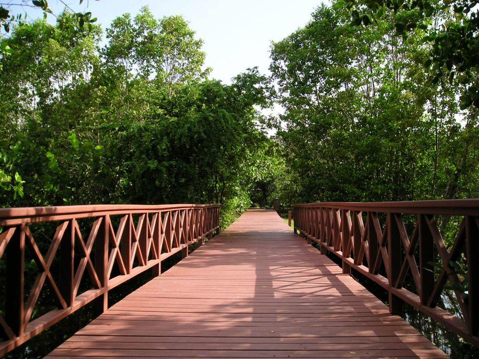nature architecture bridges wallpaper