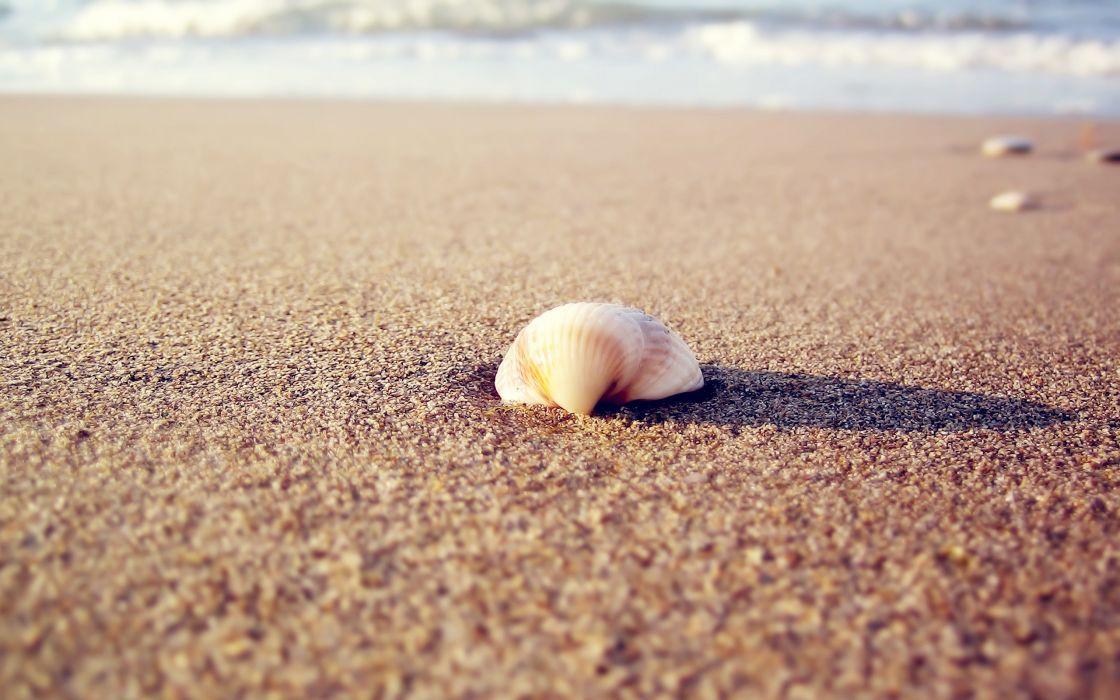 nature waves stones seashells sea beaches wallpaper