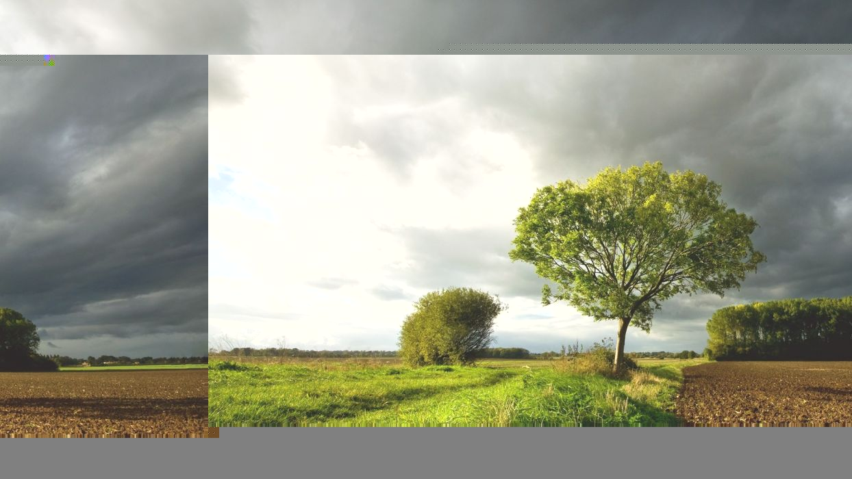 nature trees countryside land skies wallpaper