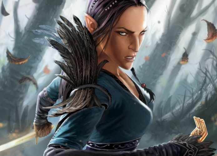 DRAKENSANG online fantasy adventure (14) wallpaper