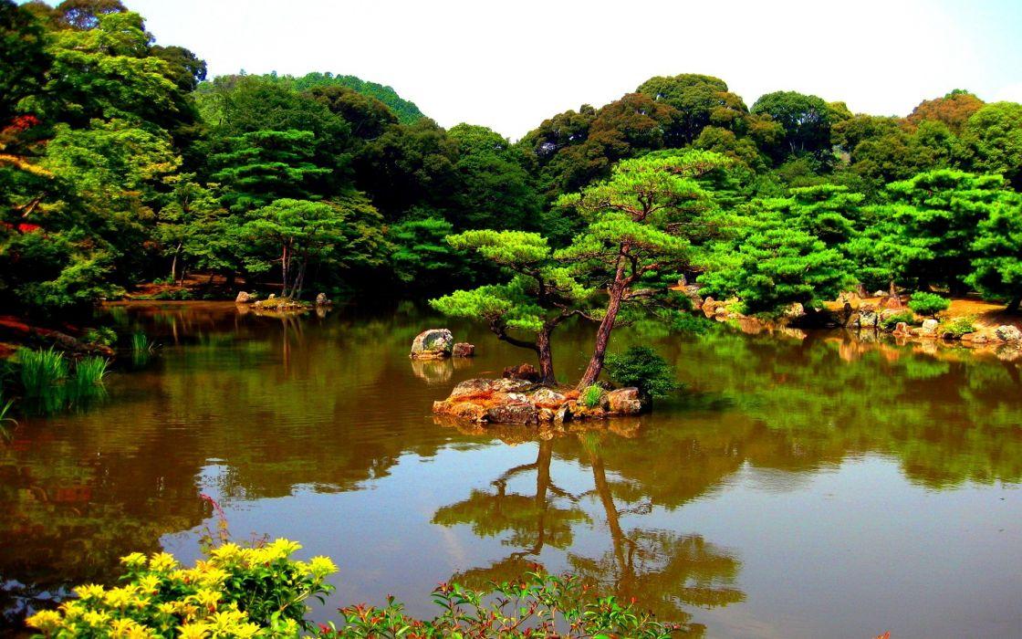 landscapes nature trees rivers wallpaper