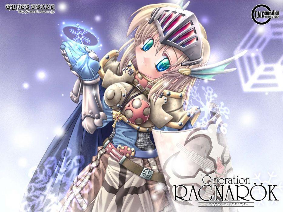 crusader Ragnarok Online wallpaper
