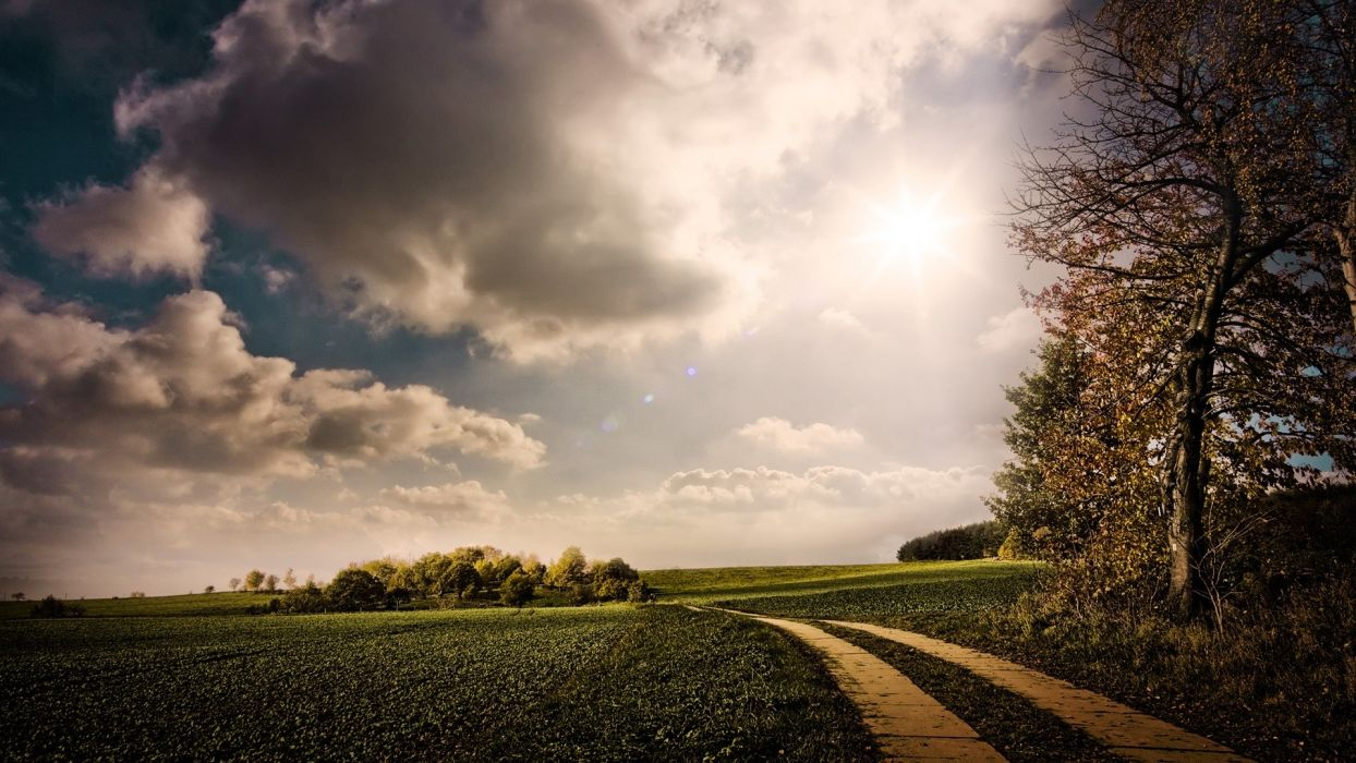 clouds landscapes trees fields lane wallpaper