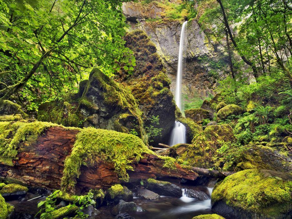 moss Oregon waterfalls Columbia wallpaper