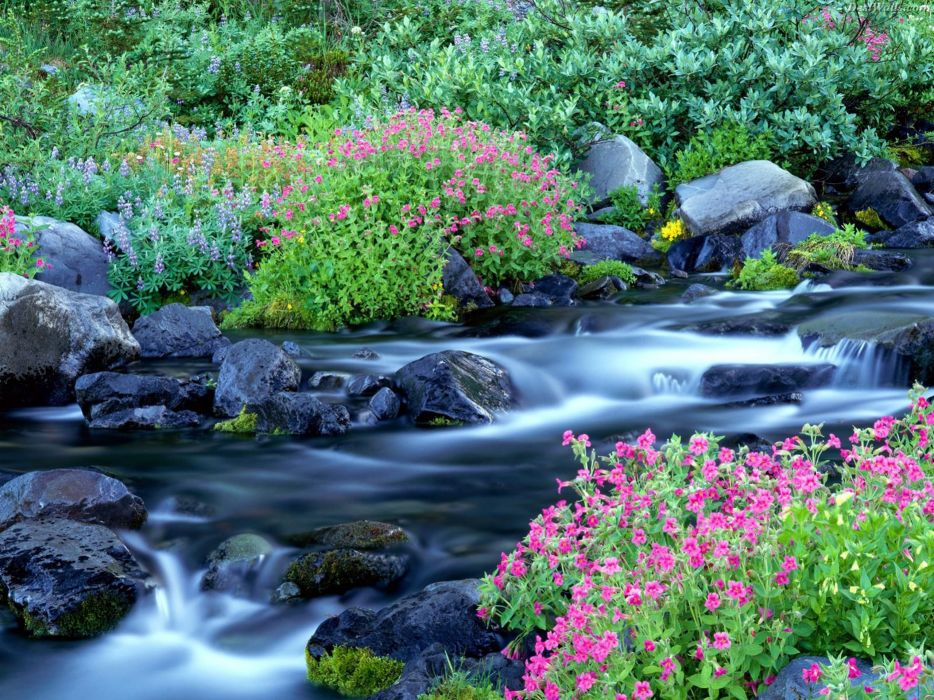 landscapes nature paradise waterfalls National Park Washington Mount Rainier wallpaper