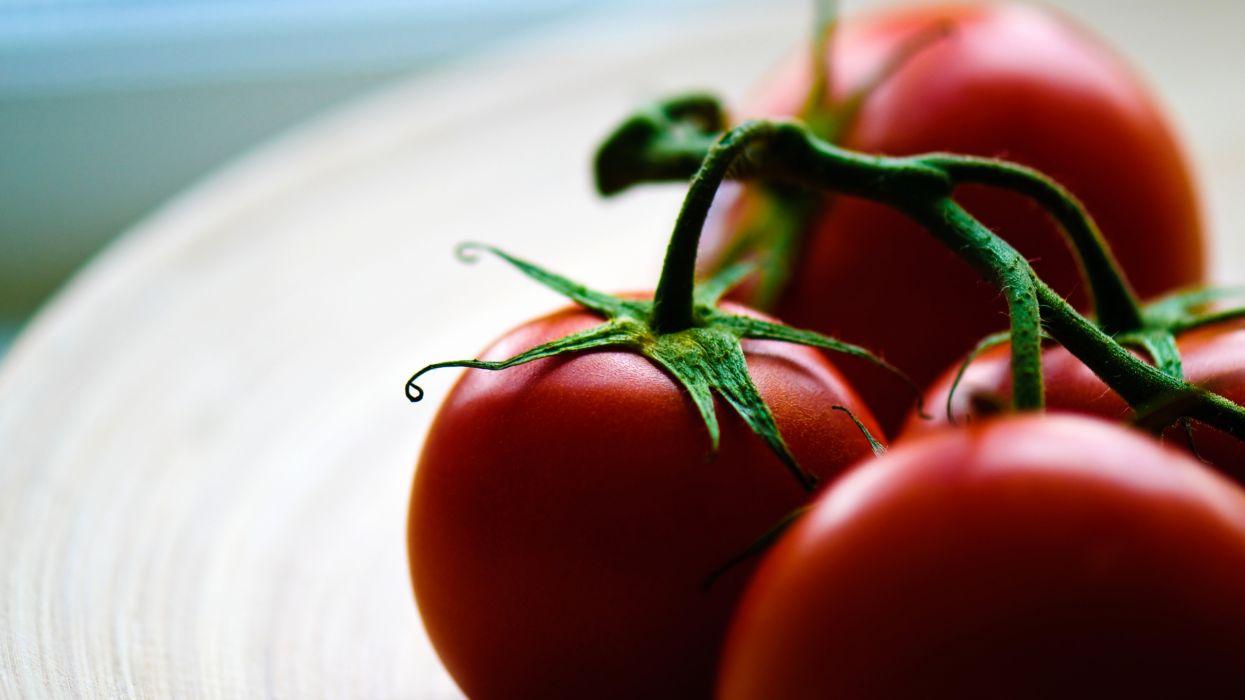 macro depth of field tomatoes  wallpaper