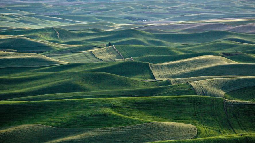 Nature mountain forest landscape fog field grass ultrahd