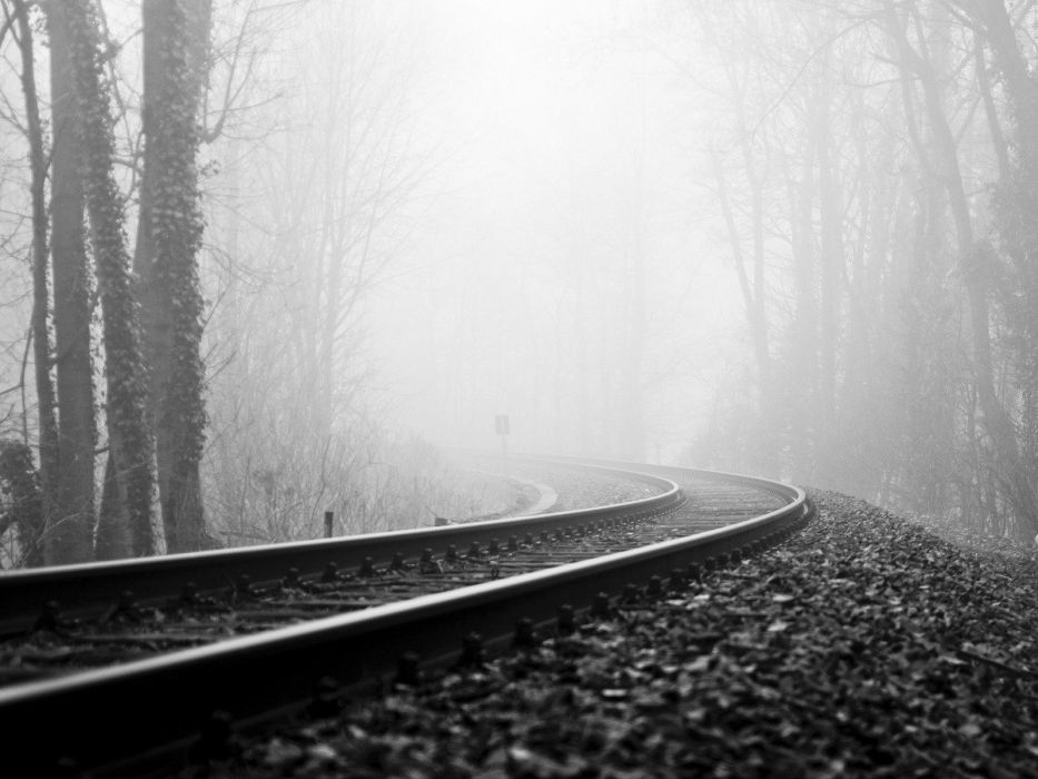 trees forests mist grayscale railroad tracks wallpaper