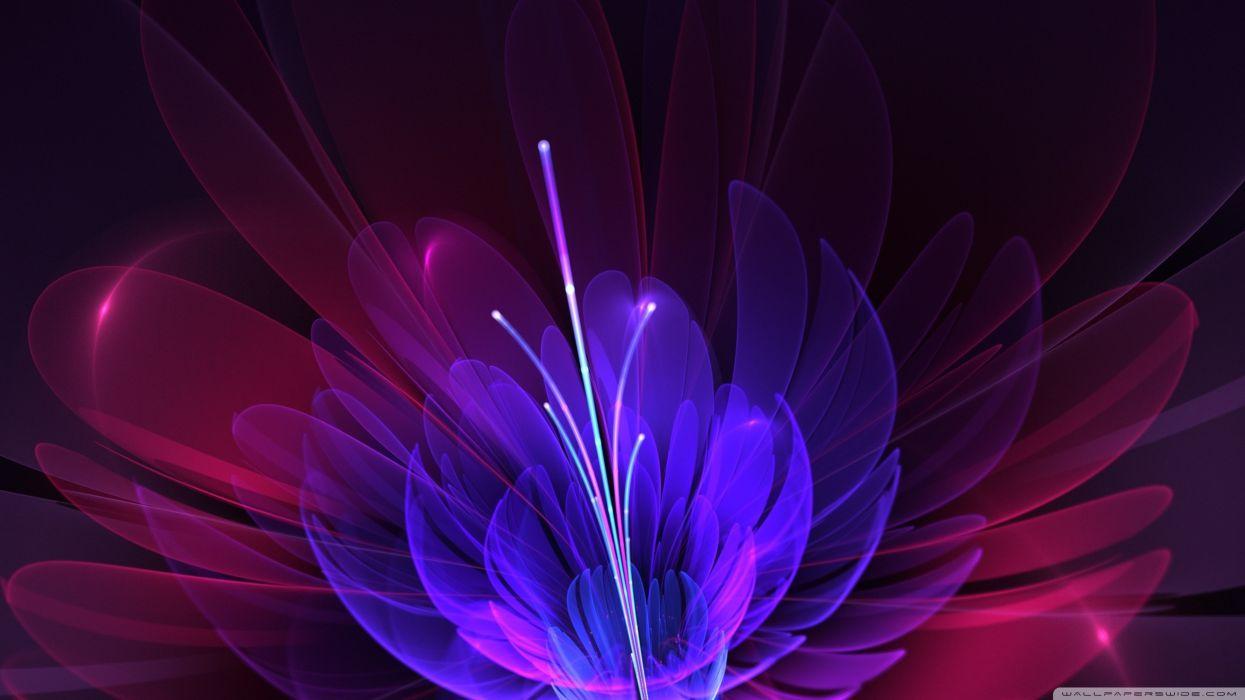 abstract bloom wallpaper