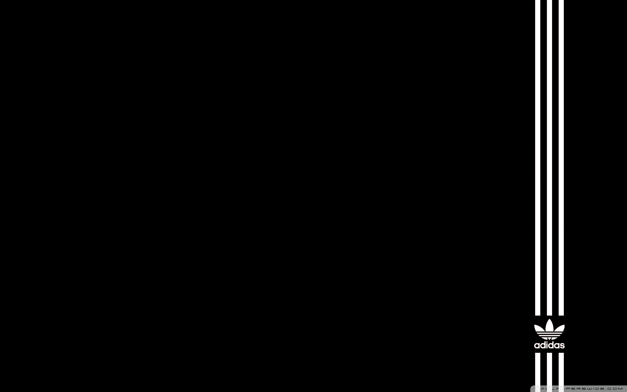 black background wallpaper 2560x1600 - photo #3