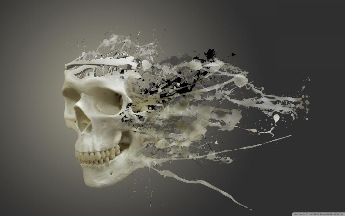 disintegrating skull-wallpaper-2560x1600 wallpaper