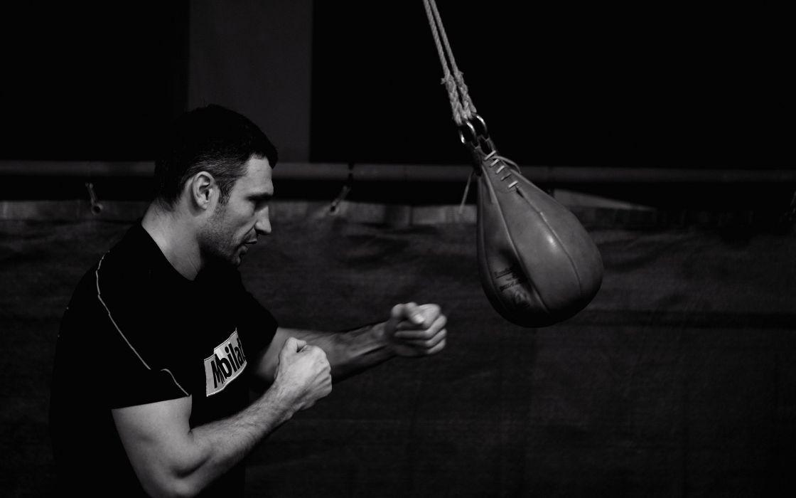 sports UFC boxers Klitschko Ukrainian wallpaper