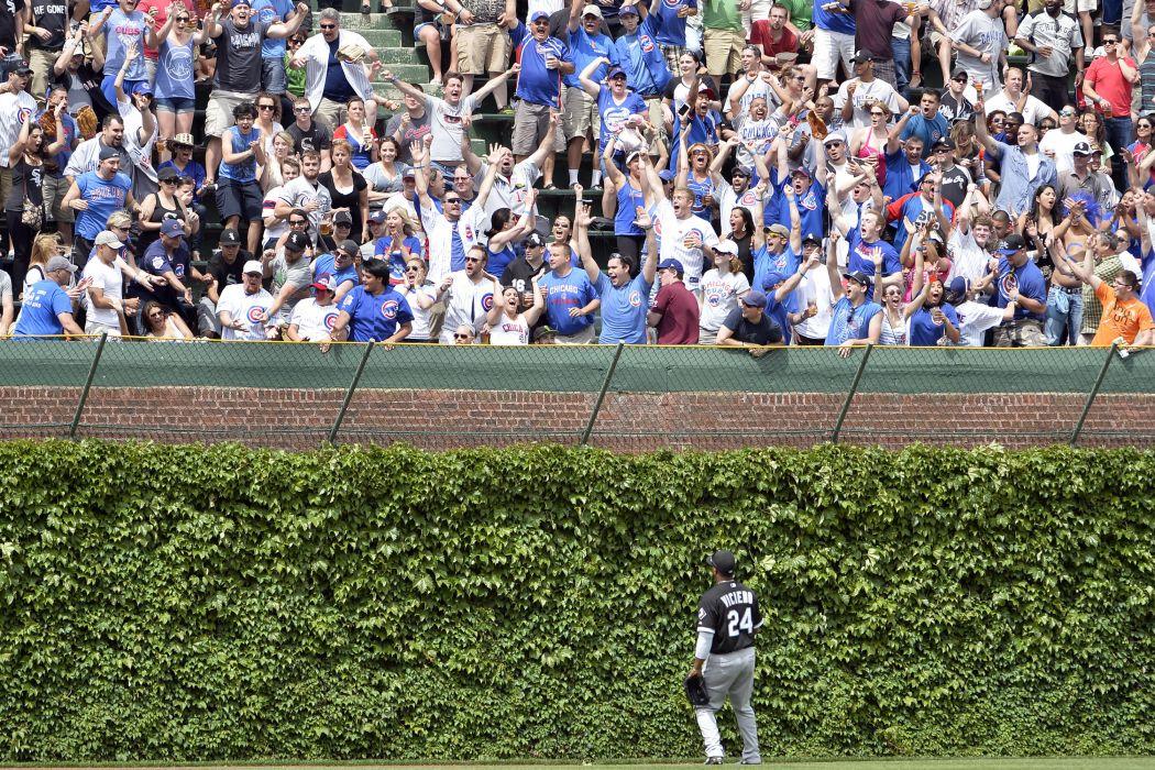 CHICAGO CUBS mlb baseball (55) wallpaper