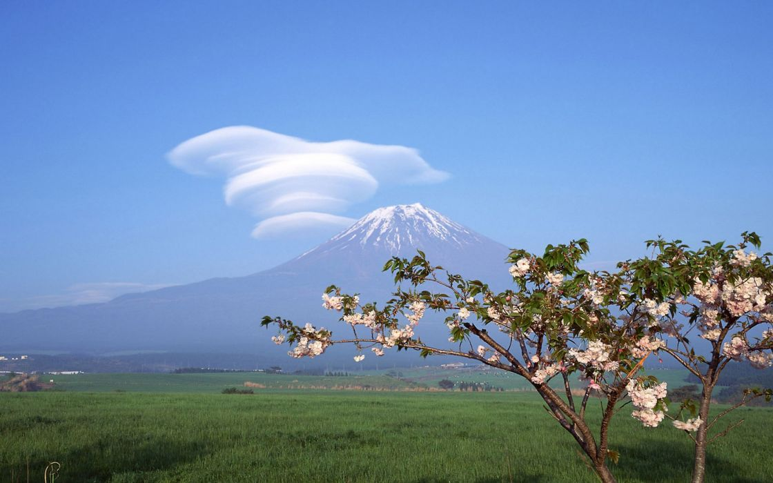 Japan clouds landscapes Mount Fuji cherry blossoms trees flowers spring wallpaper