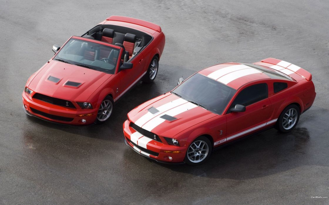 cars Ford vehicles Ford Mustang automotive wallpaper