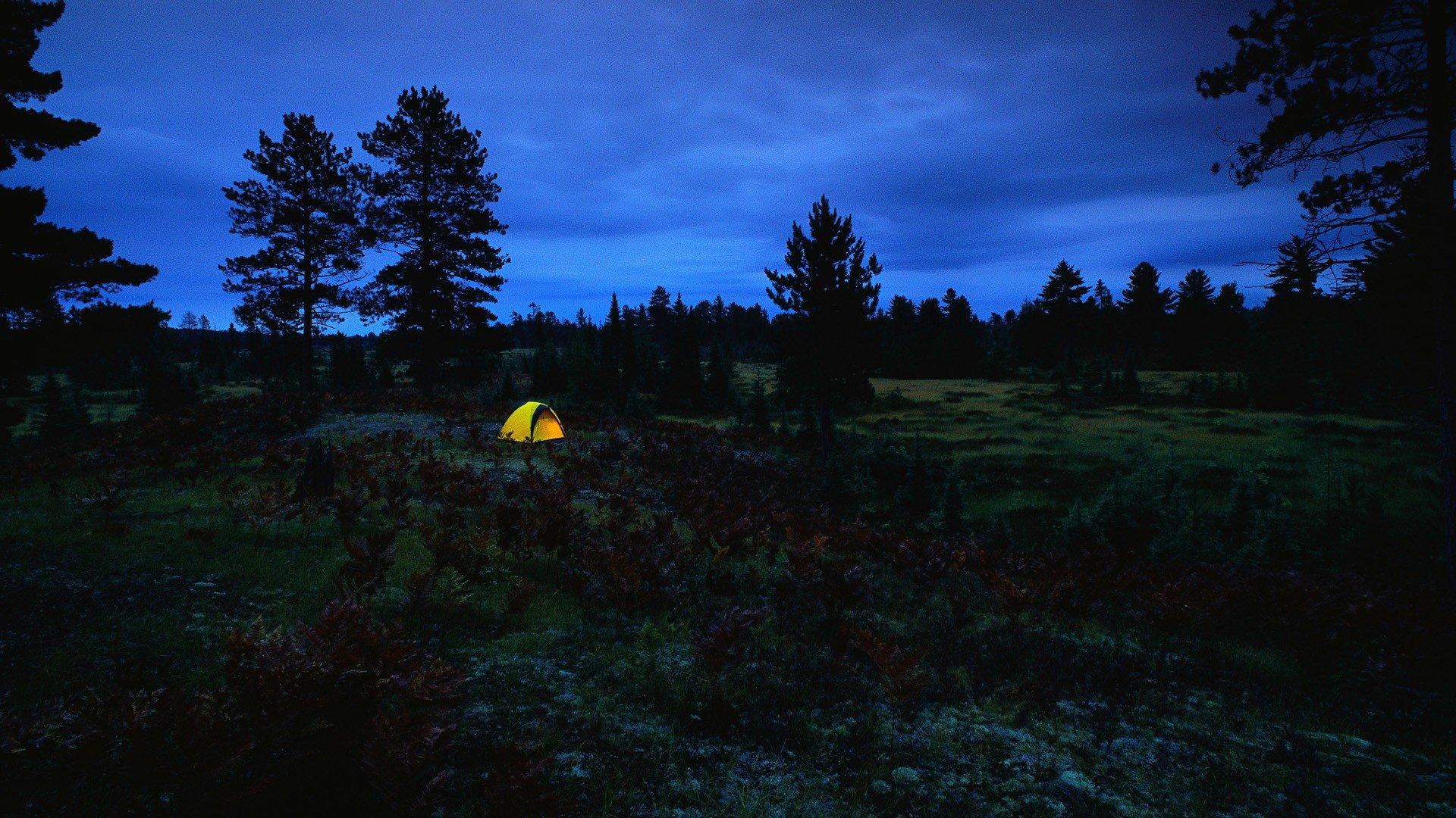 wallpaper free camping - photo #29