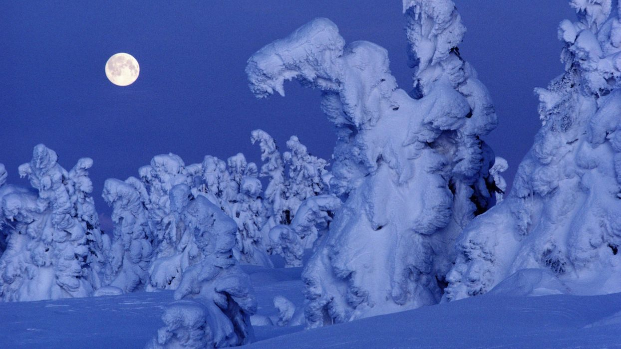 snow trees Moon Norway wallpaper